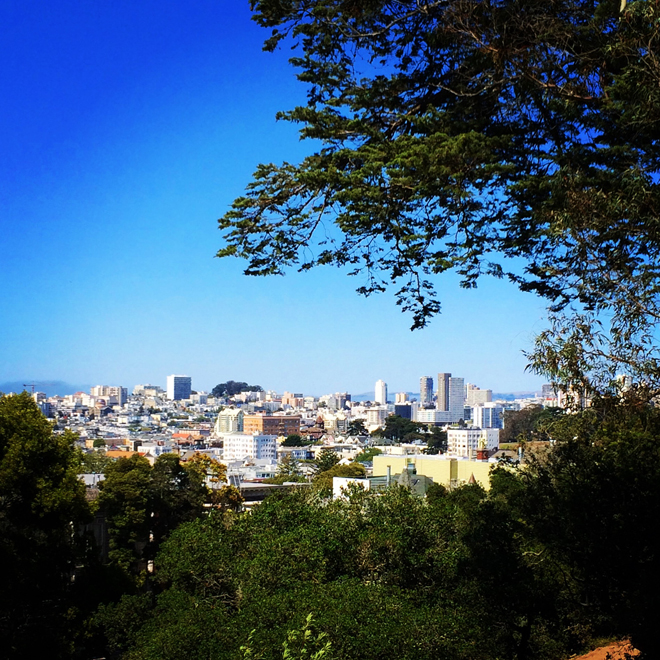 view of the city from Buena Vista Park