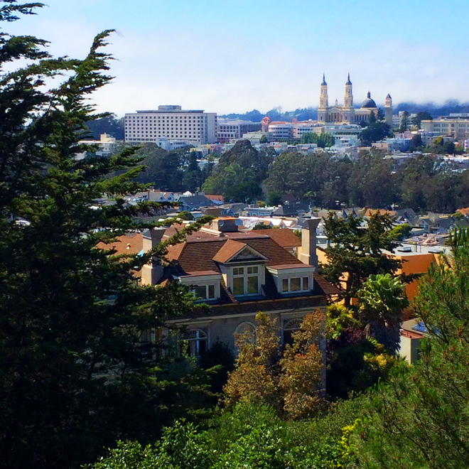 view of the Haight from the top of Buena Vista Park