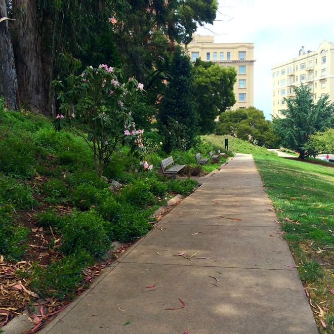 Lafayette Park in San Francisco