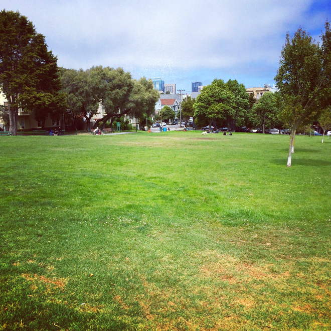 Duboce Park in San Francisco