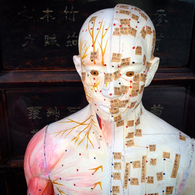 acupuncture dummy in Chinatown