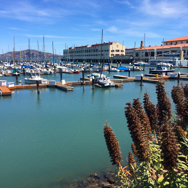 Fort Mason and marina