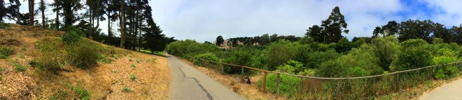 Mountain Lake Trail in Presidio Heights