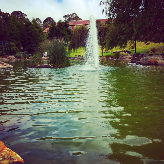 fountain in the Presidio