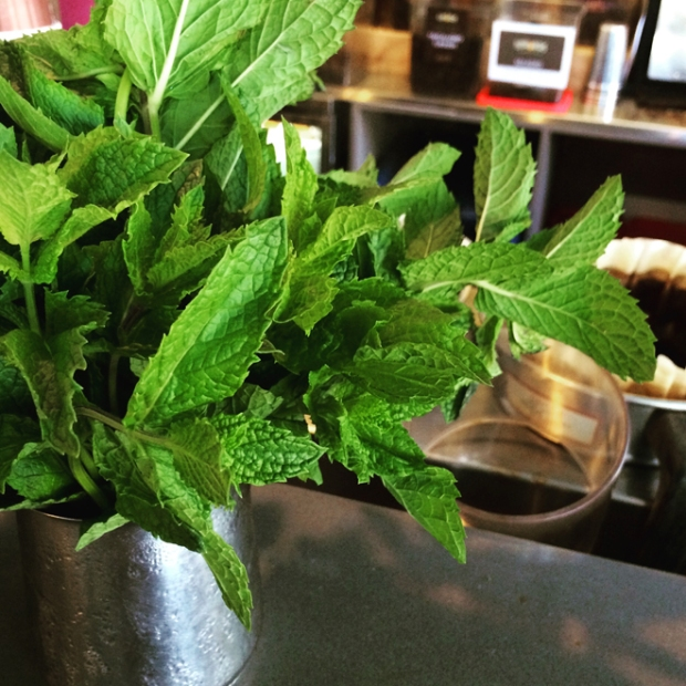 mint at Philz Coffee, Mission