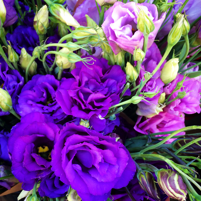 purple bouquet for sale