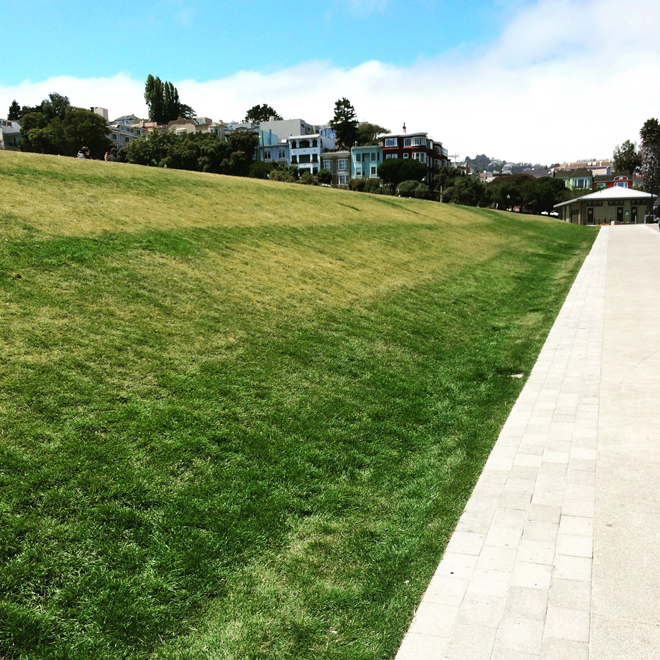 the newly-renovated north side of Mission Dolores Park in San Francisco