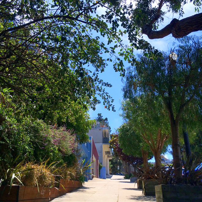steep hill in Dolores Heights