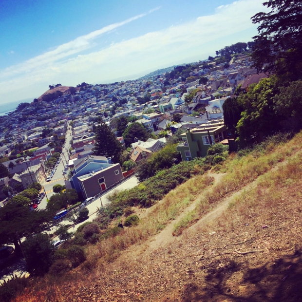 view from Billy Goat Hill Park