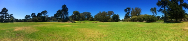 Sharon Meadows, Golden Gate Park in San Francisco, July 24, 2015
