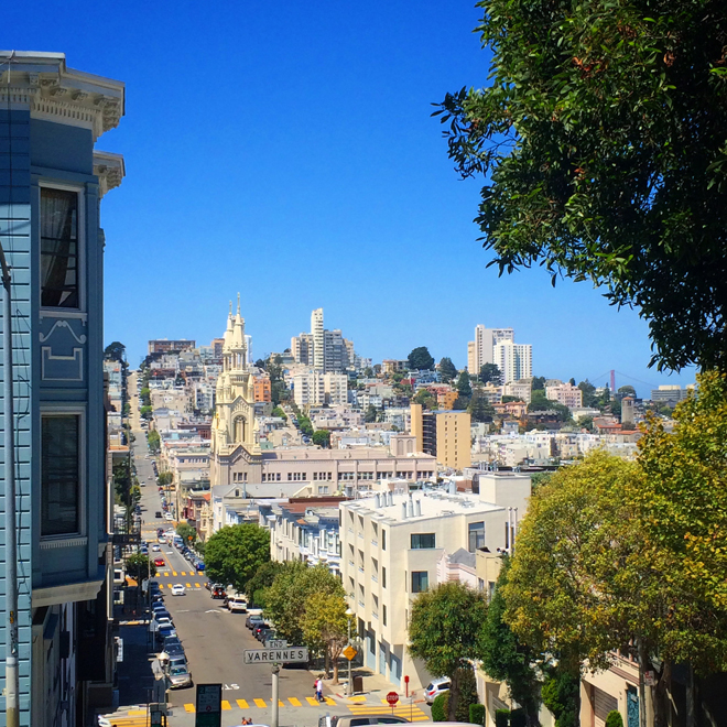 view of the city from top of Telegraph Hill