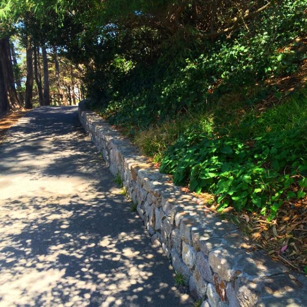 path around Coit Tower