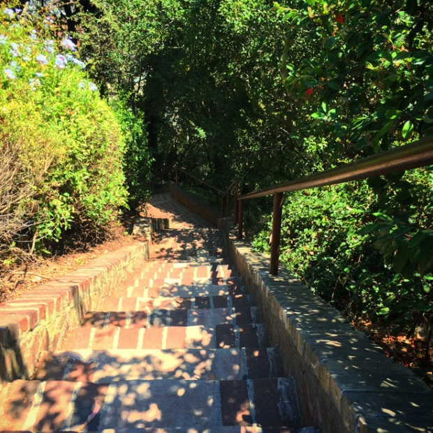 steps down Telegraph Hill