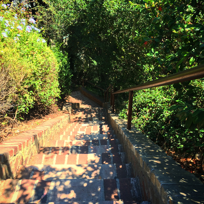 steps down Telegraph Hill