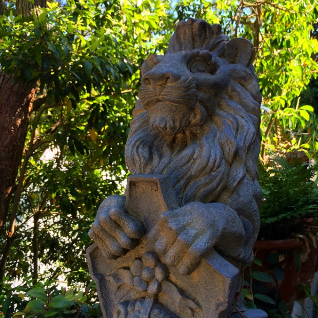 lion house guardian in Corona Heights