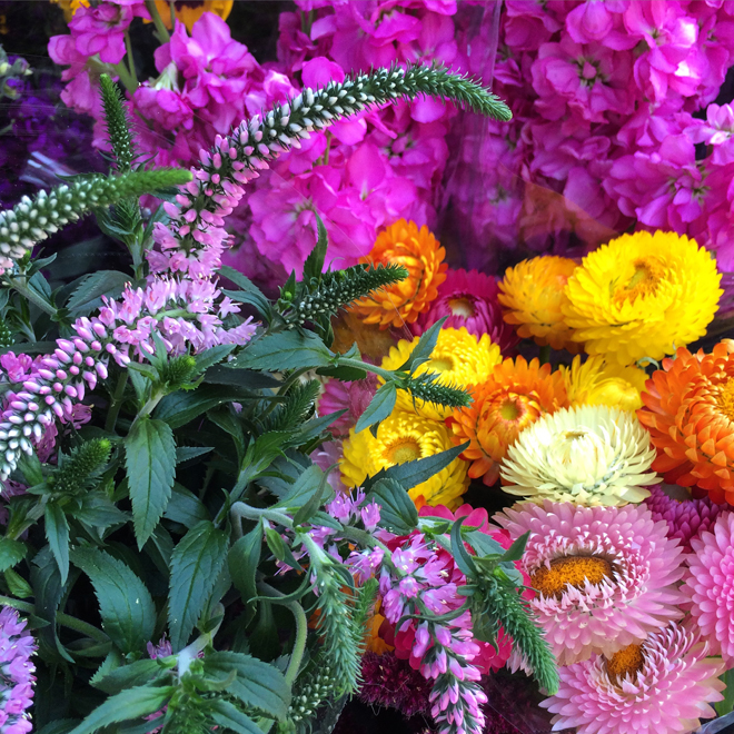 flowers for sale in the castro